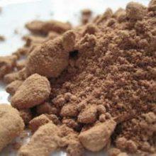 powdered galangal