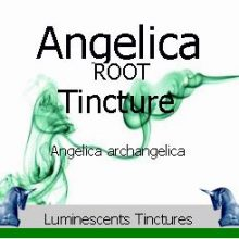 angelica-root-tincture-label