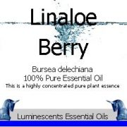 Linaloe Berry Essential Oil