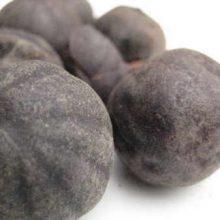 black limes whole copyright d hugonin