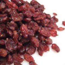 barberry berries copyright d hugonin