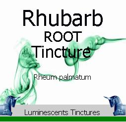 Rhubarb Root Tincture