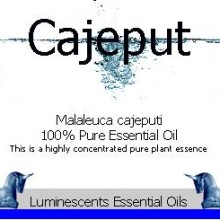 Cajeput essential oil label