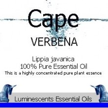 cape verbena essential oil label