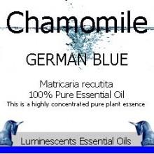 German Blue Chamomile