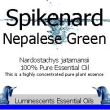 spikenard nepalese green essential oil label