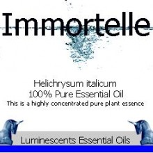 immortelle-essential-oil