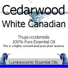 cedarwood white canadian essential oil