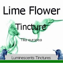 Lime Leaf and Flower Tincture label