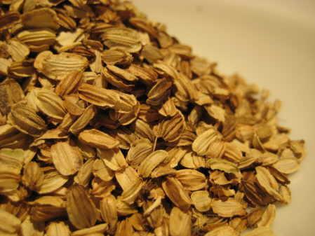Seeds//Medicinal Seeds Angelica