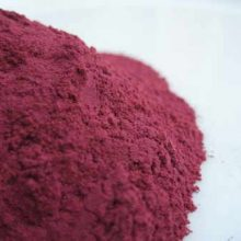 Beetroot Powder Copyright D Hugonin
