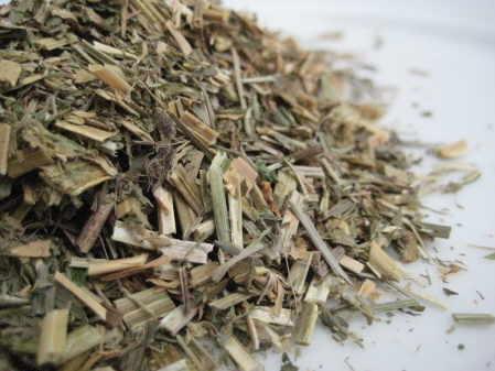 Lucerne Herb - copyright d hugonin