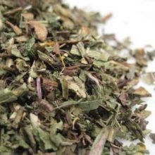 dandelion leaf copyright d hugonin