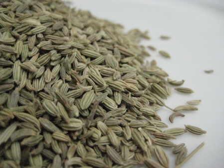 fennel seed copyright d hugonin
