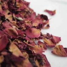 red rose petals copyright d hugonin