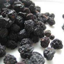 sloe-berries