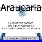 araucaria-essential-oil-label