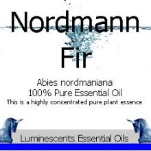 Nordmann Fir Essential Oil Label copyright d hugonin