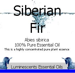 Siberian Fir Essential Oil Label copyright d hugonin