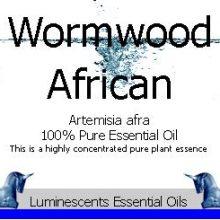 african wormwood