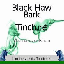 black-haw-bark-tincture