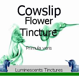 cowslip-flower-tincture-label