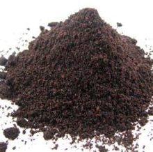 elder-berry-powder