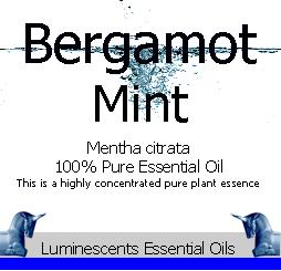 bergamot-mint-essential-oil
