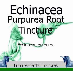 echinacea-purpurea-root-tincture-label