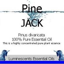 jack-pine-essential-oil-label