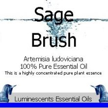 sage-brush-essential-oil-label