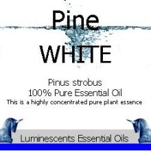 white-pine-essential-oil-label
