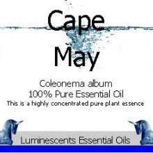 cape-may-essential-oil