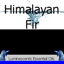 Himalayan Fir Essential Oil Label copyright d hgugonin