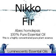 Nikko Fir Essential Oil Label copyright d hugonin