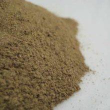 barberry bark powder copyright d hugonin