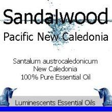 sandalwood pacific new caledonia essential oil copyright d hugonin