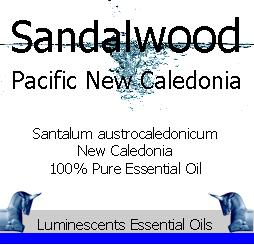 sandalwood pacific new caledonia essential oil copyright d hugonin