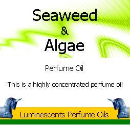Seaweed and algae perfume oil copyright d hugonin
