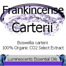 frankincense carterii co2 select extract