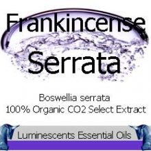 frankincense serrata co2 select extract