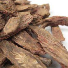Red Sage Root copyright d hugonin