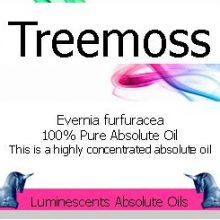 treemoss absolute oil