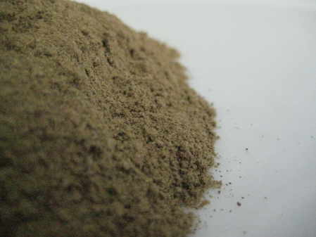mimosa pudica powder copyright d hugonin