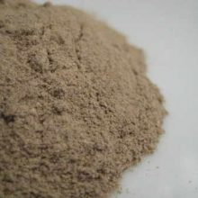 lovage root powder copyright d hugonin