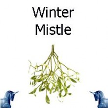 Winter Mistle