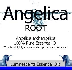 Angelica Root essential oil label