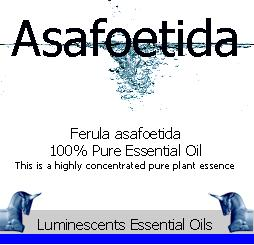 asafoetida essential oil