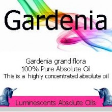 gardenia absolute oil label