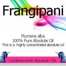 frangipani absolute oil label